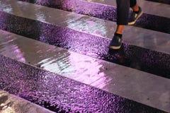 Cruzamento pedestre a rua em uma noite chuvosa fotografia de stock royalty free
