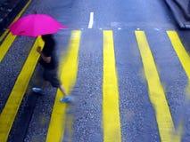 Cruzando a estrada na chuva Fotografia de Stock Royalty Free