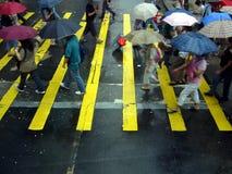 Cruzando a estrada na chuva Foto de Stock Royalty Free
