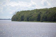 Cruzando no rio as Amazonas, na floresta tropical, Brasil Imagens de Stock Royalty Free