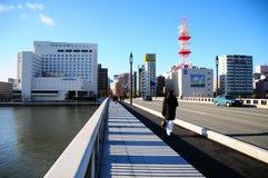 Cruzando a ponte Imagem de Stock Royalty Free