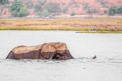 Cruzar el río Fotos de archivo libres de regalías
