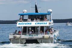 Cruzeiro da natureza do rei III da baía que dirige para fora no porto da barra, Maine Foto de Stock