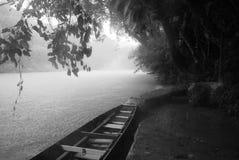Cruzeiro do rio da floresta húmida Fotografia de Stock Royalty Free