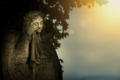 Crying angel public sculpture on the cemetery with golden sunset light. Crying angel public sculpture on the cemetery with golden sunset light Royalty Free Stock Photos