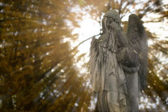 Crying angel Stock Photography
