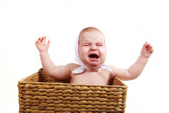 Crying baby in backet Stock Photography
