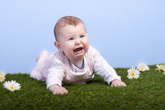 Crying baby lying on a grass field Stock Image