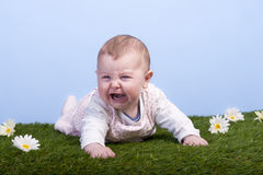 Crying baby lying on a grass field Royalty Free Stock Photography