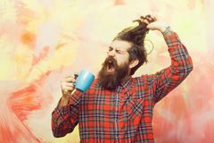 Crying bearded man pulling stylish fringe hair with blue cup. Crying bearded man, caucasian hipster, with long beard and moustache pulling stylish fringe hair stock images