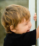 Crying boy. Taking a fence Stock Images