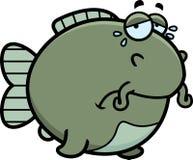 Crying Cartoon Catfish Stock Photos