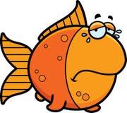 Crying Cartoon Goldfish Stock Photo