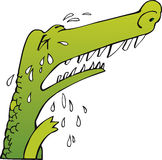 Crying crocodile. Sad green crocodile sob crying Royalty Free Stock Image