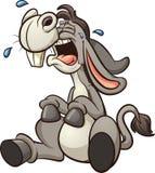 Crying donkey Stock Images