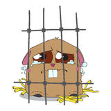Crying hamster in a cage. Stock Photo