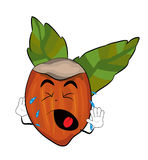 Crying Hazelnut cartoon Royalty Free Stock Image