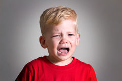 Crying kid child boy Royalty Free Stock Image