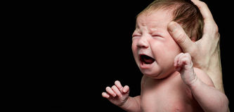 Crying new bornb baby Royalty Free Stock Photos