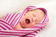 Crying newborn baby in the hospital Stock Image
