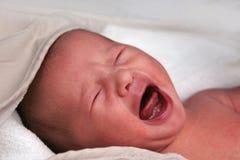 Crying Newborn Stock Image