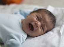 Crying newborn boy Royalty Free Stock Photos