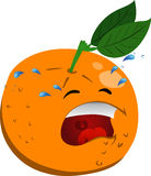 Crying orange Stock Photos