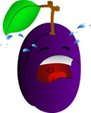Crying plum Royalty Free Stock Photos