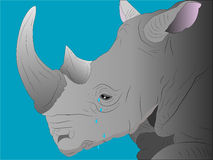 Crying rhinoceros. Royalty Free Stock Image