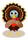 Crying turkey Stock Photos