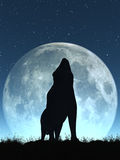 Crying Wolf Royalty Free Stock Photo