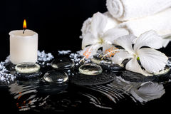 Cryogenic spa still life of delicate white hibiscus, zen stones Royalty Free Stock Image