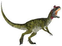 Cryolophosaurus Stock Photo