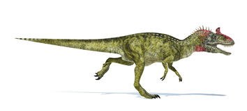Cryolophosaurus dinosaur, photorealistic representation. Side vi. Cryolophosaurus dinosaur, photorealistic and scientifically correct representation. Side view Royalty Free Stock Image