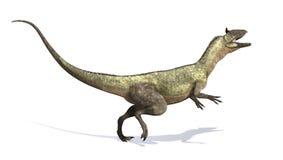 Cryolophosaurusdinosaurie Royaltyfri Bild