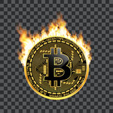 Crypto currency bitcoin golden symbol on fire. Crypto currency golden coin with black lackered bitcoin symbol on obverse surrounded by realistic flame and  on Royalty Free Stock Image