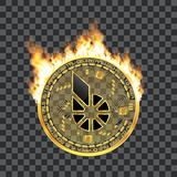 Crypto currency bitshares golden symbol on fire Royalty Free Stock Photography
