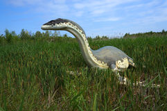 Cryptoclidus (Plesiosaur). Model of dinosaur. Stock Photo