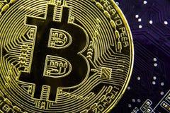 Cryptocurrency Bitcoin sulla scheda madre Moneta di oro Valuta virtuale Fotografia Stock Libera da Diritti