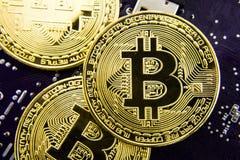 Cryptocurrency Bitcoin sulla scheda madre Moneta di oro Valuta virtuale Immagine Stock Libera da Diritti