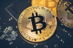 Cryptocurrency bitcoin złota moneta konceptualny wizerunek dla crypto waluty Zdjęcie Stock