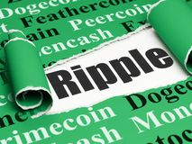 Cryptocurrency concept: black text Ripple under the piece of  torn paper. Cryptocurrency concept: black text Ripple under the curled piece of Green torn paper Royalty Free Stock Photography