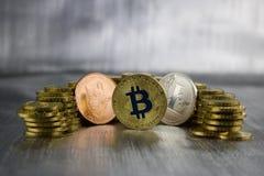 Cryptocurrency doge, bitcoin, litecoin Royaltyfri Bild