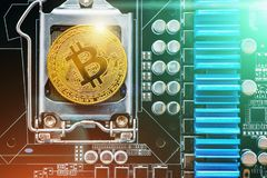 Cryptocurrency golden bitcoin coin on printed circuitboard. Conceptual image for crypto currency royalty free stock photo
