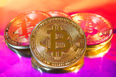 Cryptocurrency physical golden bitcoin coin on colorful backgrou Stock Images