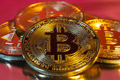 Cryptocurrency physical golden bitcoin coin on colorful backgrou Stock Photo