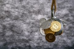 Cryptocurrency, souvenir coins of Litecoin Bitcoin Ethereum are caught by magnet and hanging on a rope, abstract background with p Royalty Free Stock Photos