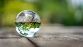 Crystal Ball With Green Tree. Crystal Ball With Wooden Terrace And Natural Green Tree Scenery royalty free stock photography