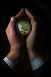 Crystal Ball Hands Tree Fotografia Stock Libera da Diritti