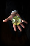 Crystal Ball Hands Tree Fotografie Stock Libere da Diritti